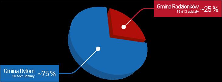 Wykres kołowy udziałów